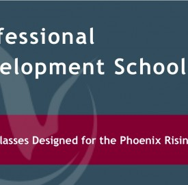 Professional Development School Image